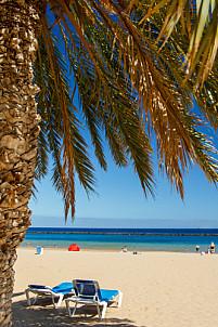 Playa Las Teresitas - Tenerife