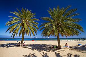 Las Teresitas: Tenerife