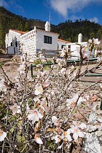 Inagua