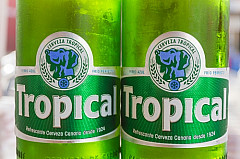 Tropical Beer