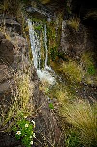 Waterfalls in the barranco of La Palma, Agaete