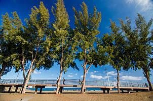 beach access San Agustín