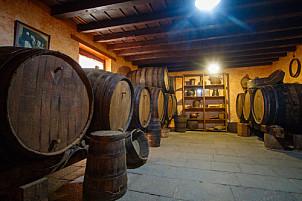 Casa del Vino - Santa Brígida