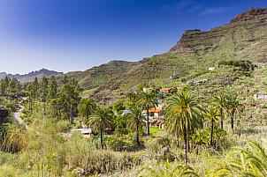 Mogan Valle