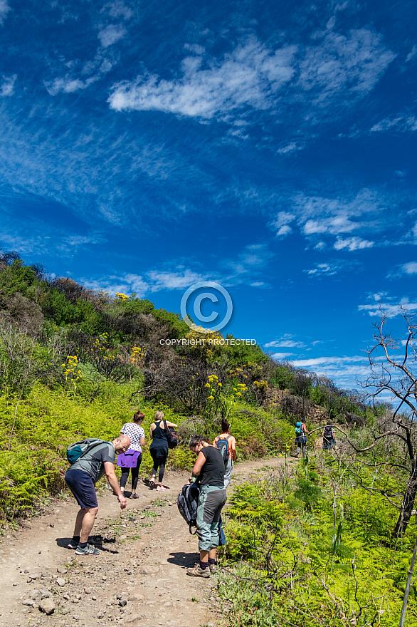 Hiking near Fontanales