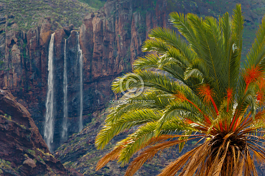 Charco Azul y arriba - Gran Canaria
