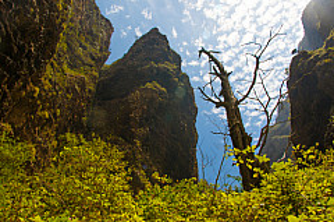 Barranco del Infierno - Tenerife