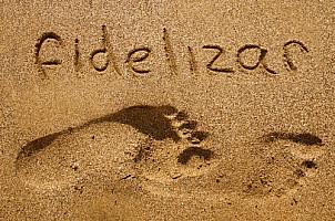Fidelizar
