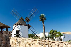 Museo del Queso Majorero - Fuerteventura