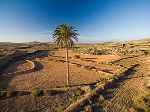 Malpais de la Arena - Fuerteventura