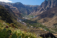 The Valley of Agaete