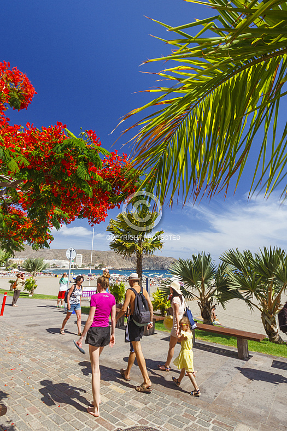 Playa Los Cristianos Tenerife