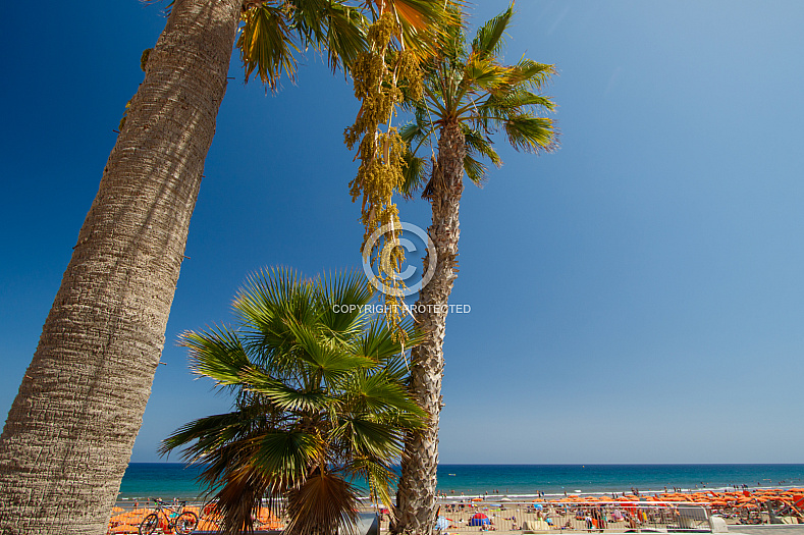 The beach of Playa del Inglés