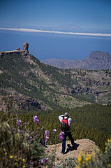 HIker looking at Roque Nublo and the Teide on Tenerife