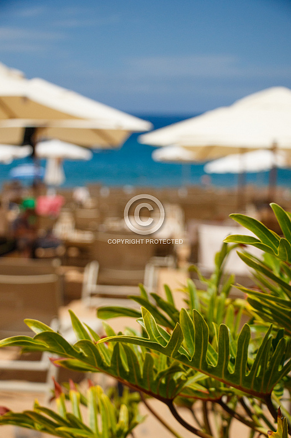 Playa de Abama - Tenerife