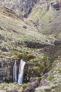 Guayedra