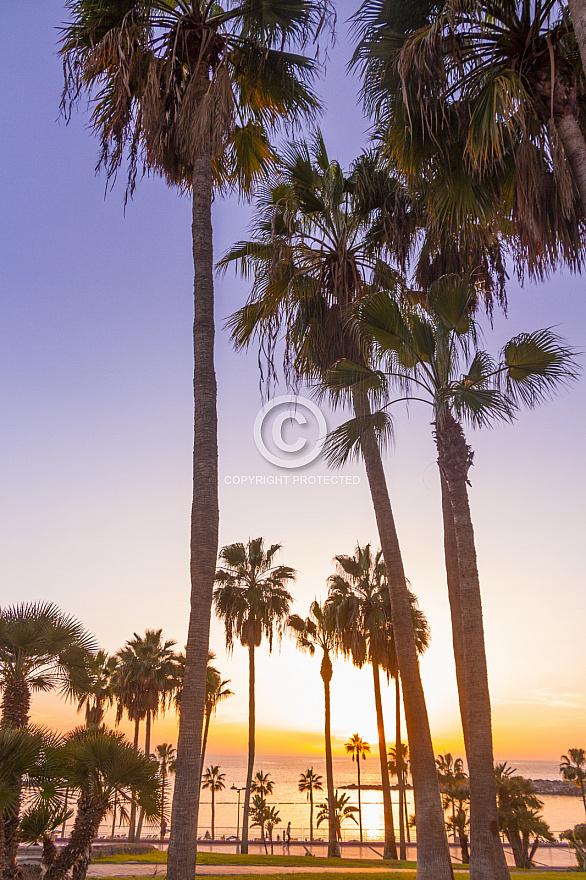 Amadores Sunset