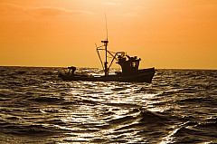 Fishing boat at sea during sunset